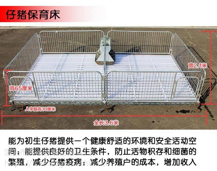 新型保育床双体保育床多少钱