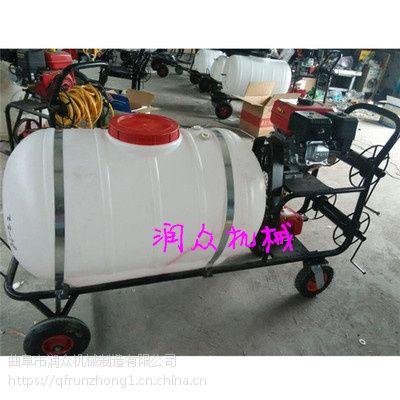 多功能新款气雾喷雾器 畜牧杀虫打药机 7.5HP喷雾机 润众