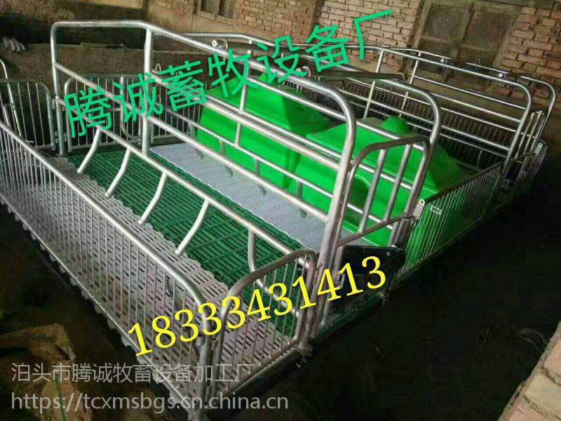 母猪产床厂家 母猪产床价格 母猪产床图片