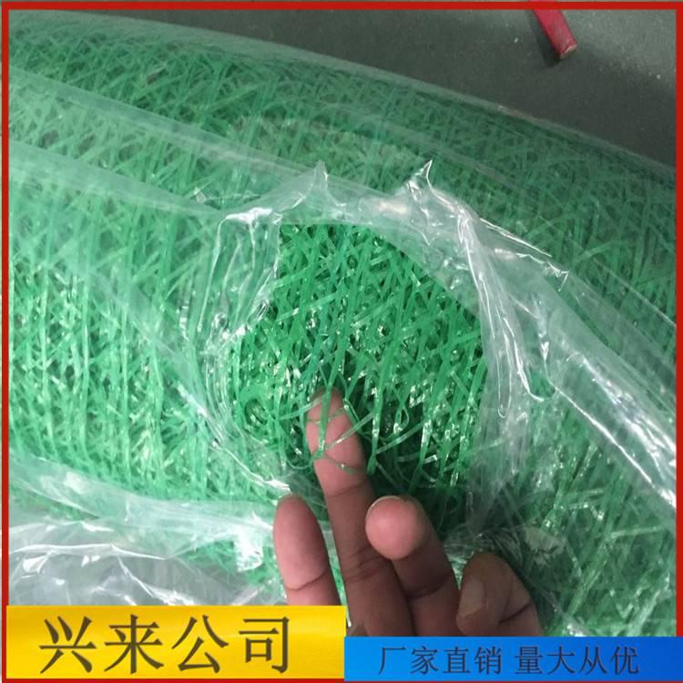 1.5针的防尘网 建筑防尘网利润 临沂盖土网厂家