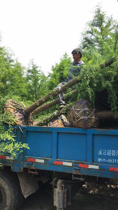 http://himg.china.cn/0/4_320_1040633_450_800.jpg