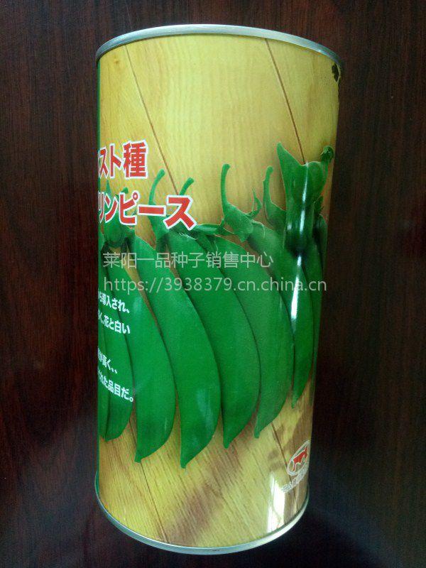 美国进口奇珍76精选豌豆种子