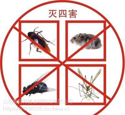 烟台灭蟑螂除蟑螂服务公司
