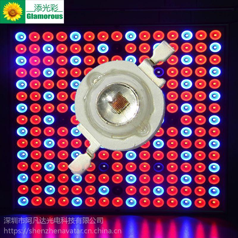 大功率仿流明红光 LED大功率仿流明贴片 3W红光 红光660 665 发光LED贴片专用
