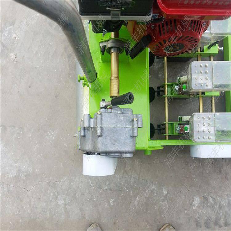 汽油机蔬菜育苗播种机 免间苗蔬菜播种机润丰机械专业生产