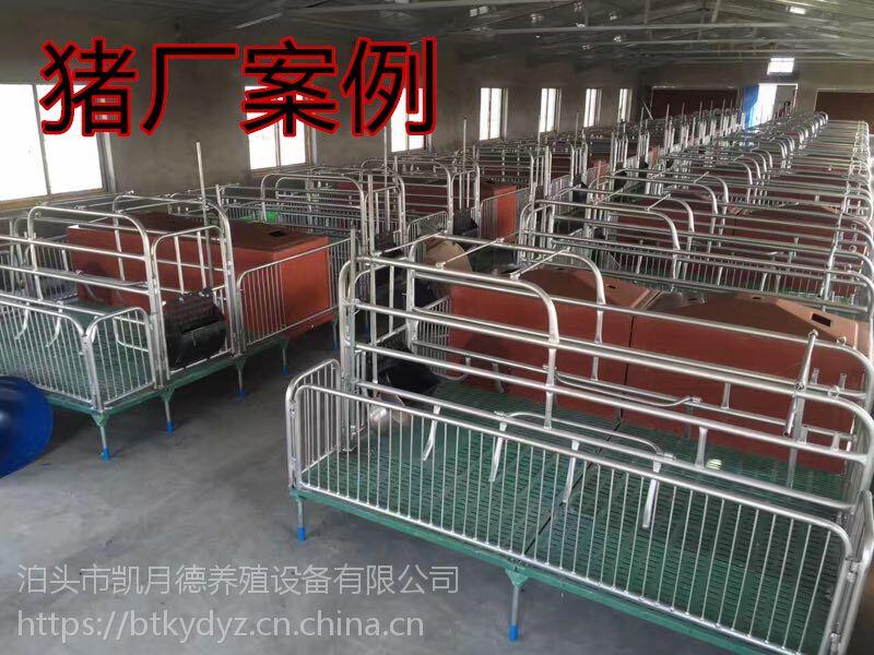 东北专业生产母猪产床 猪产床 定位栏 保育床 铸铁母猪板