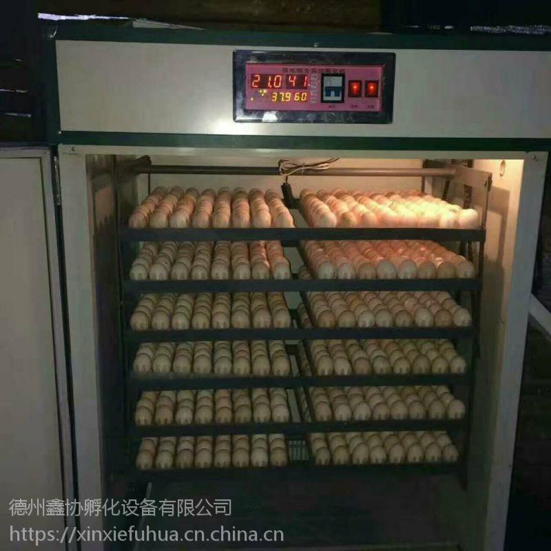 资阳孵化机/小鸡孵化机/孵化设备