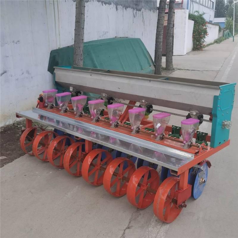 草种子播种机 萝卜油菜精播机 10行蔬菜油菜播种机批发