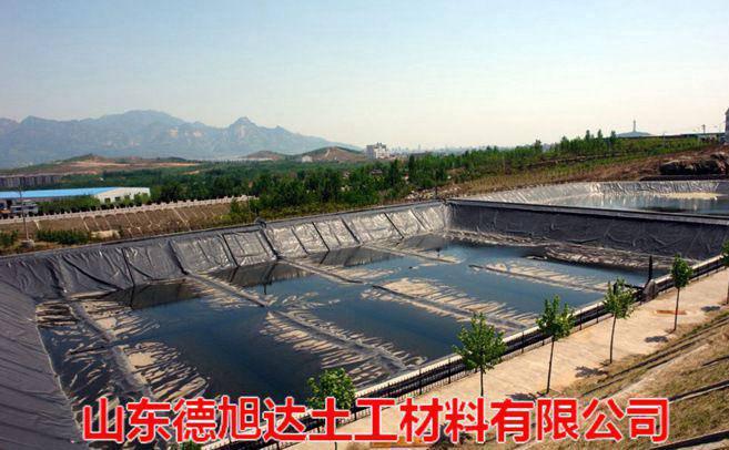 开平虾池防渗膜 土工膜产品型号