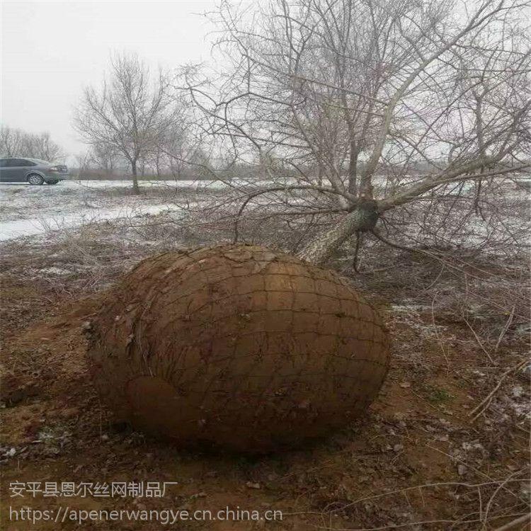 苗木铁丝网,移植土球网,包土球网篮规格