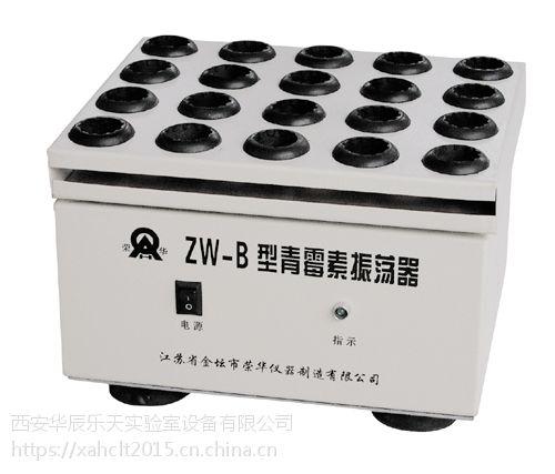 金坛荣华 ZW-B型青霉素振荡器 小型曲霉素摇床 常州荣华