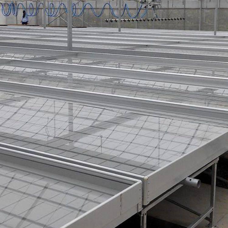 汉明温室专用育苗网 常州滚动苗床 自动式植床网 经济实用