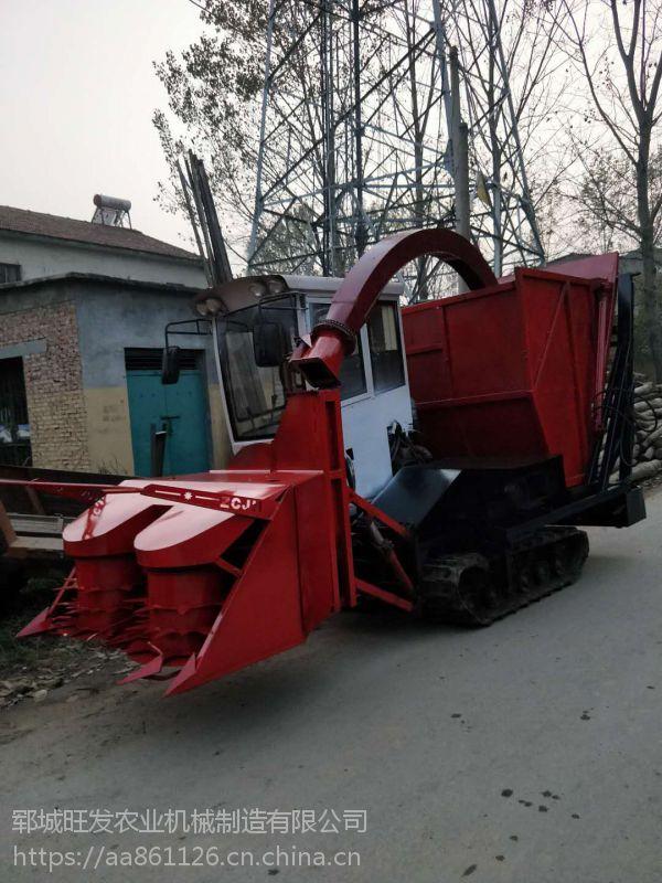 牧草青储机厂家直销 履带式秸秆柔丝青储机 铡草机