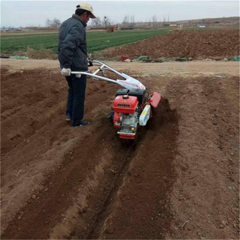 手扶式地蛋培土开沟机 芒果树根施肥挖沟机圣通品牌