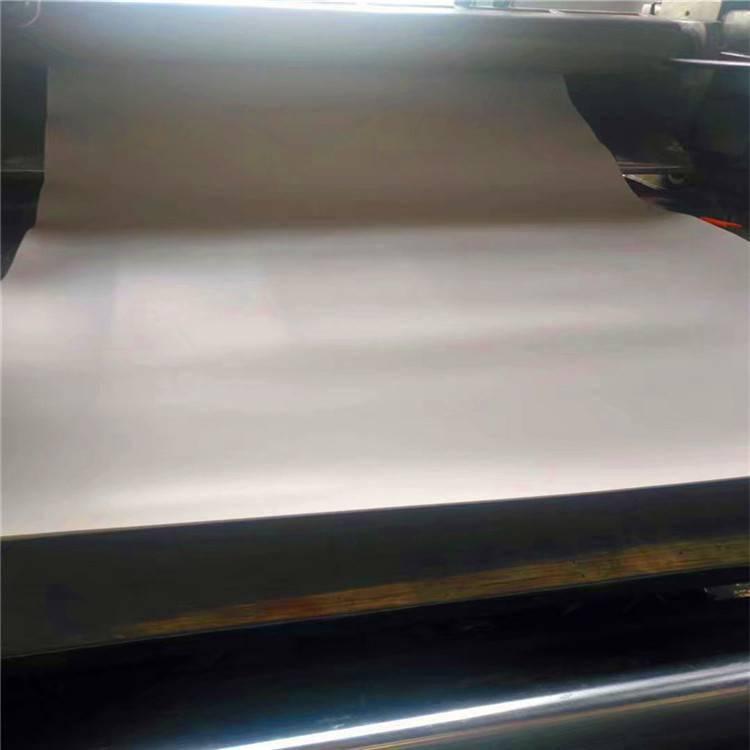 河北昌盛生产聚四氟板 聚四氟乙烯板价格