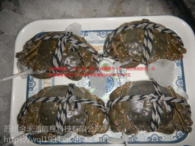 大闸蟹防伪戒指专业定制给每一个蟹都带上二维码身份证
