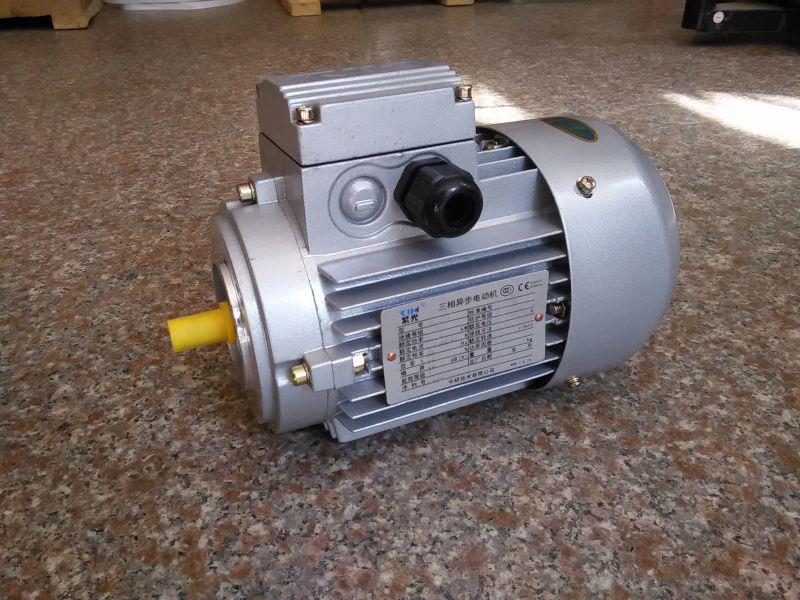 MS6312电机/中研紫光电机厂家