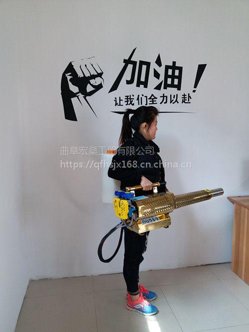 宏燊农田菜园子高压喷雾机 小型水稻田背负式脉冲动力烟雾机