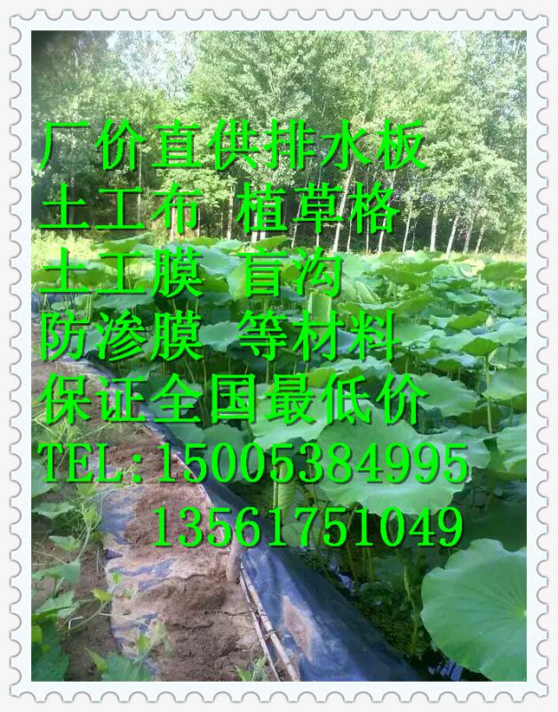 http://himg.china.cn/0/4_358_240496_628_800.jpg
