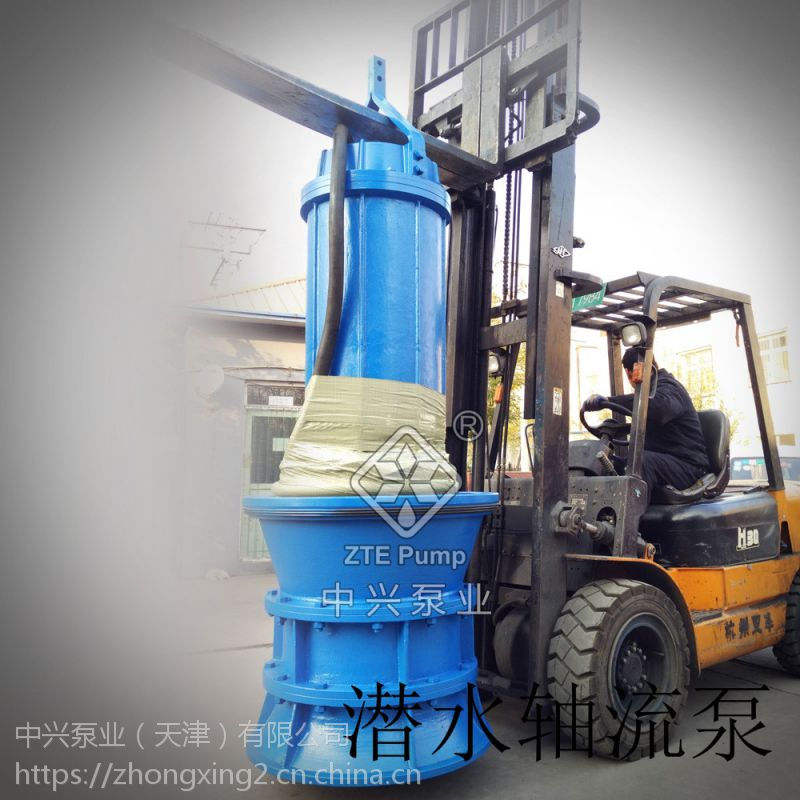 600QZ-132KW潜水轴流泵
