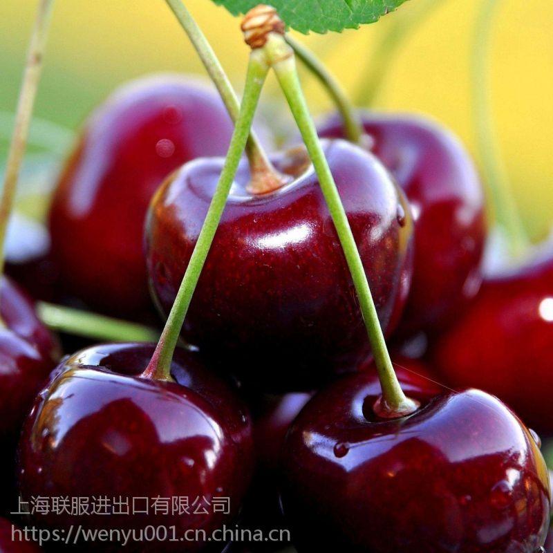 进口水果上海联服报关行***靠谱