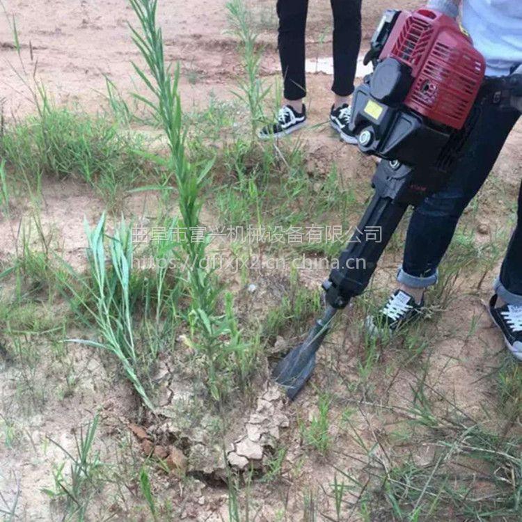 铲头式挖树机 富兴牌冬青树移栽起苗机 四冲程移苗起树机价格
