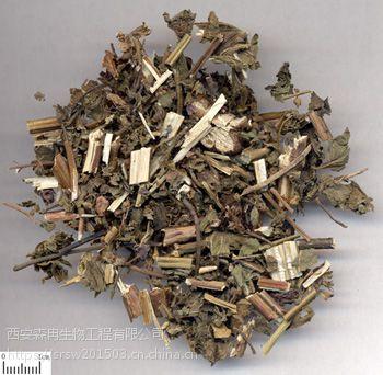 森冉生物紫苏梗提取物/紫苏茎提取物/紫苏杆提取物