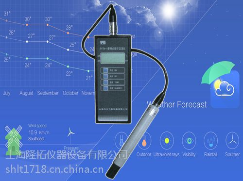 CY-12C数字测氧仪,便携式数字测氧仪