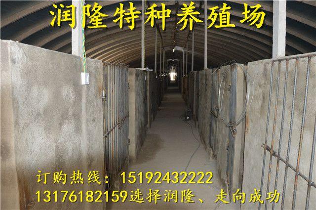 http://himg.china.cn/0/4_379_235180_640_425.jpg