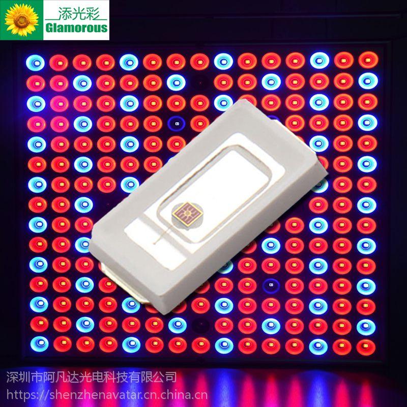 高亮5730橙光LED贴片灯 0.5W5730橙光600-605