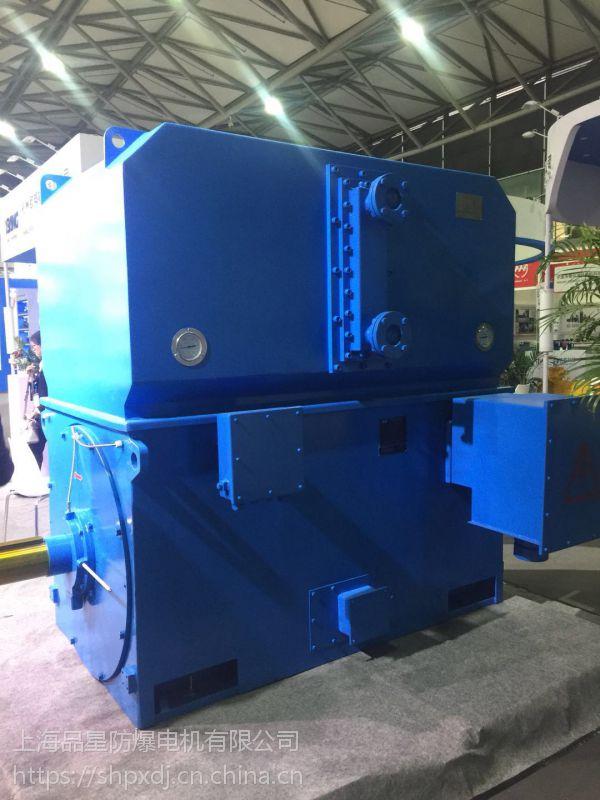 上海品星厂家直销 YKS-500-4-1000KW-10KV 高压石化冶金电机