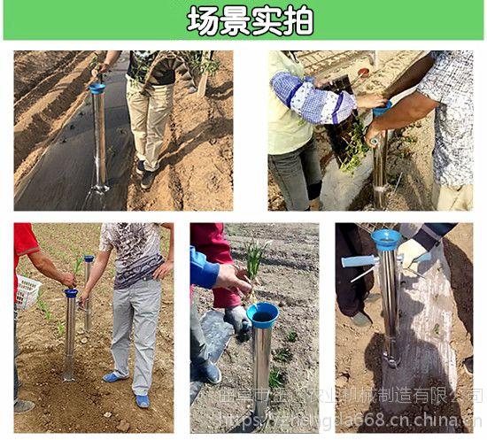 辣椒苗茄子苗种植器 黄瓜苗栽器厂家直销