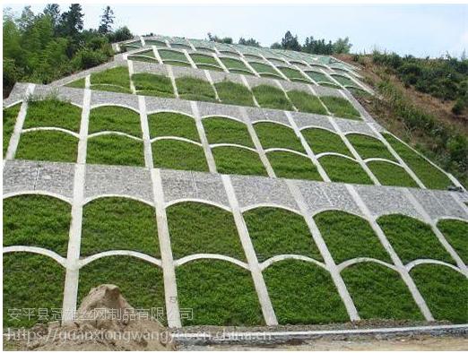厂家设计施工客土喷播绿化材料包施工 TBS植被护坡绿化 高次团粒喷播施工
