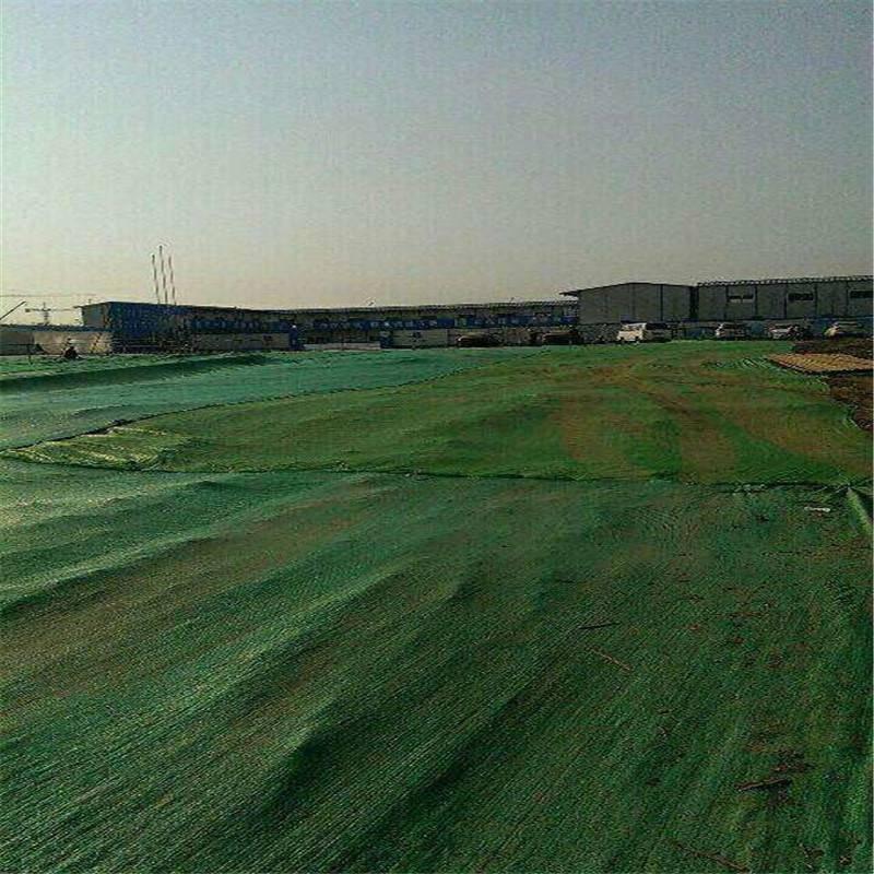 两针盖土网 防老化遮阳网 绿色防尘网