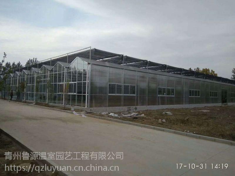 海南生态旅游园玻璃温室大棚物联网调控类型施工厂家