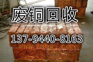 http://himg.china.cn/0/4_3_236476_300_202.jpg