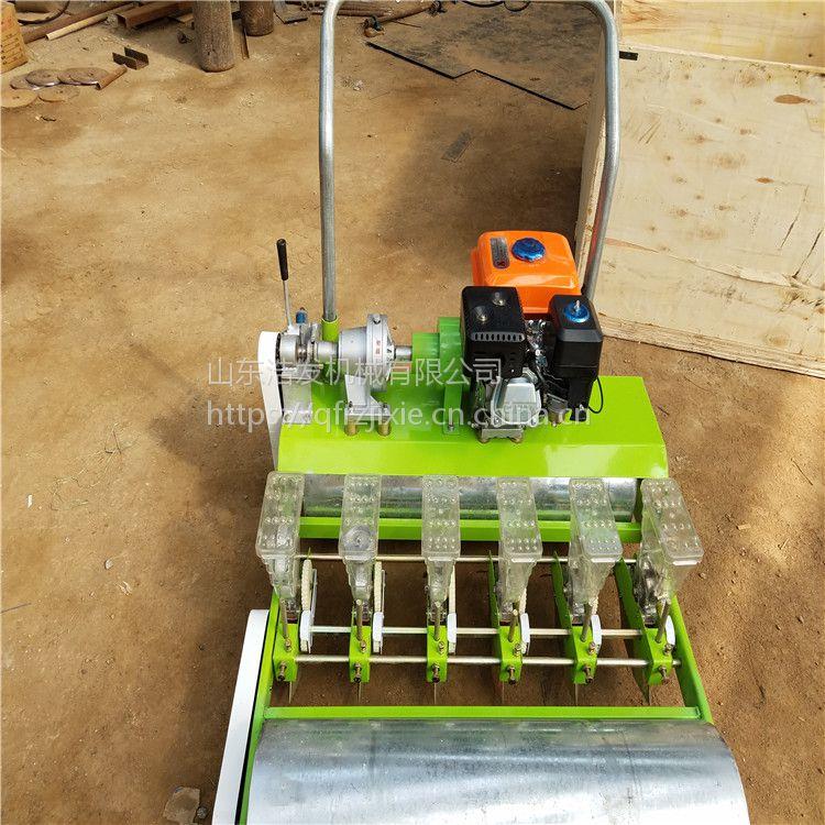 农用人力手推蔬菜播种机 手推车式小型蔬菜精播机 浩发