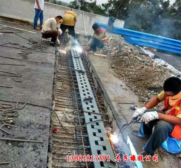 http://himg.china.cn/0/4_401_1089353_630_585.jpg