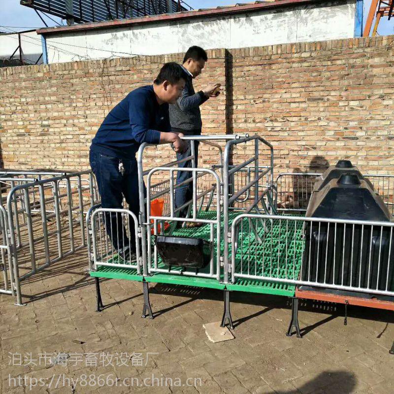 双体母猪产床保育床二合一 保护母猪呵护仔猪 产品质保一年