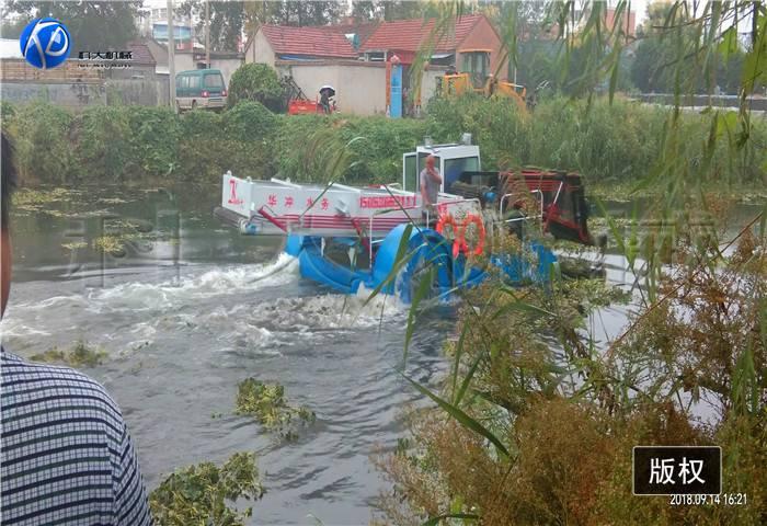江苏徐州打捞水草船 收集水浮萍机械