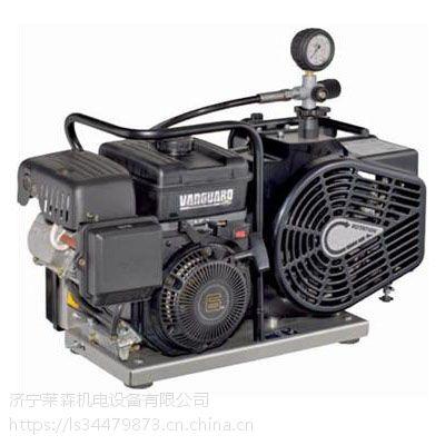 青岛梅思安高压呼吸空气压缩机100PFI供应价格