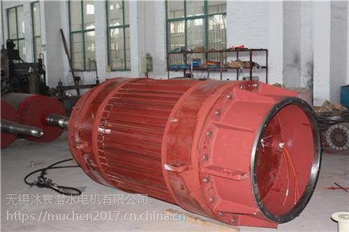 无锡沐宸(图),潜水电机订购,宁波潜水电机
