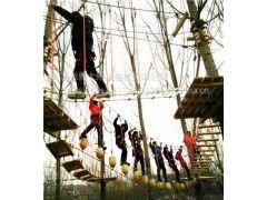 中国西北地区丛林拓展,户外拓展,树上拓展销售厂家