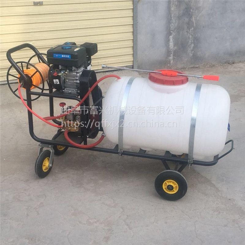 柴油喷雾器 富兴牌拉管式喷药车 喷雾器价格