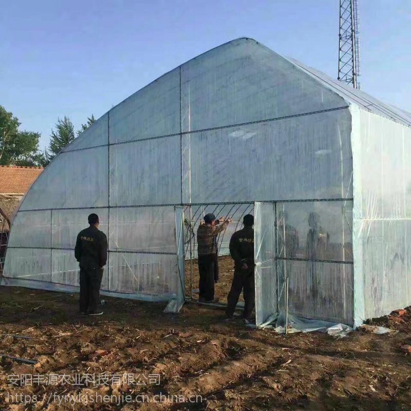 温室大棚温室骨架机,新型钢架温室大棚骨架,安阳丰源农业