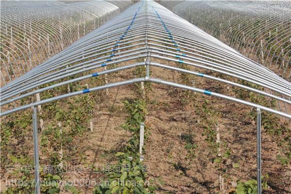 温室塑料大棚棚膜-类型-透光率-厚度-河北安平