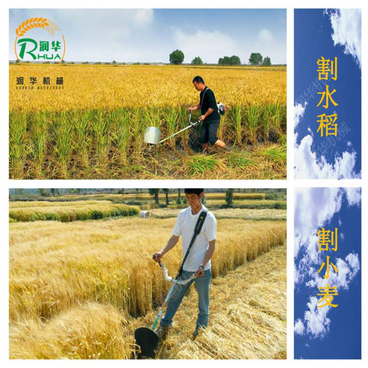 农用锄草机价格 田园割草机 手推式剪草机