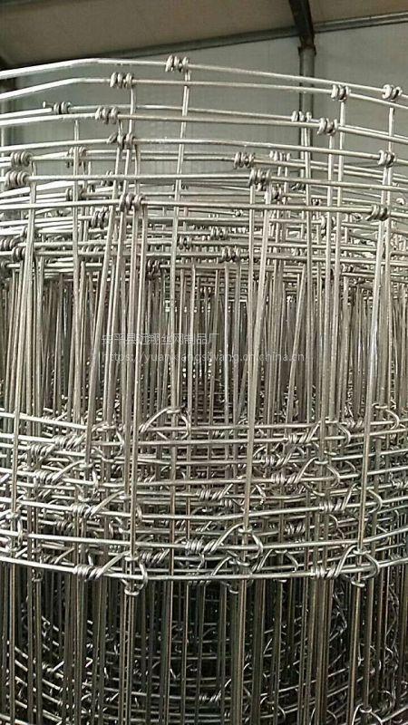 远翔鹿网 专门做鹿网的厂家