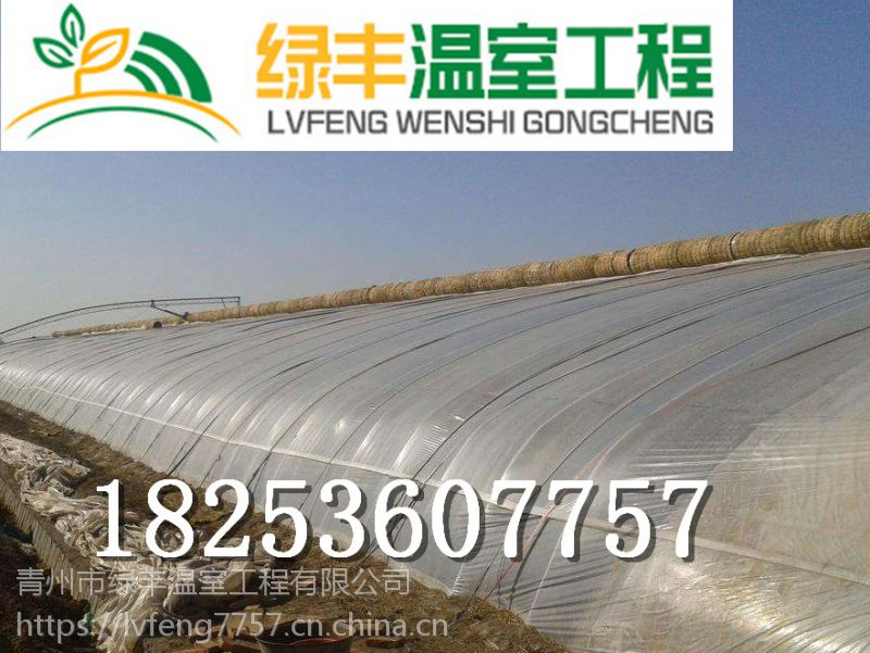 济南智能温室大棚设计,价格,青州绿丰温室