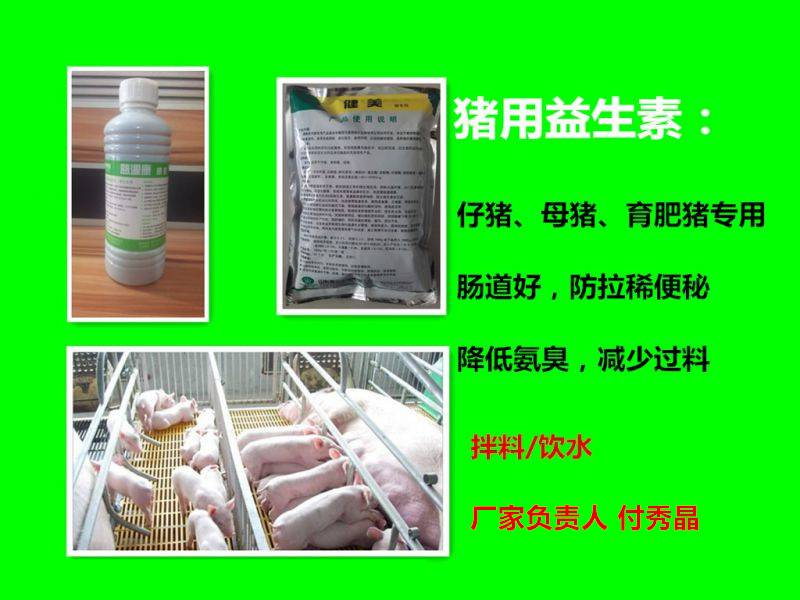 猪用益生素厂家猪益生素介绍